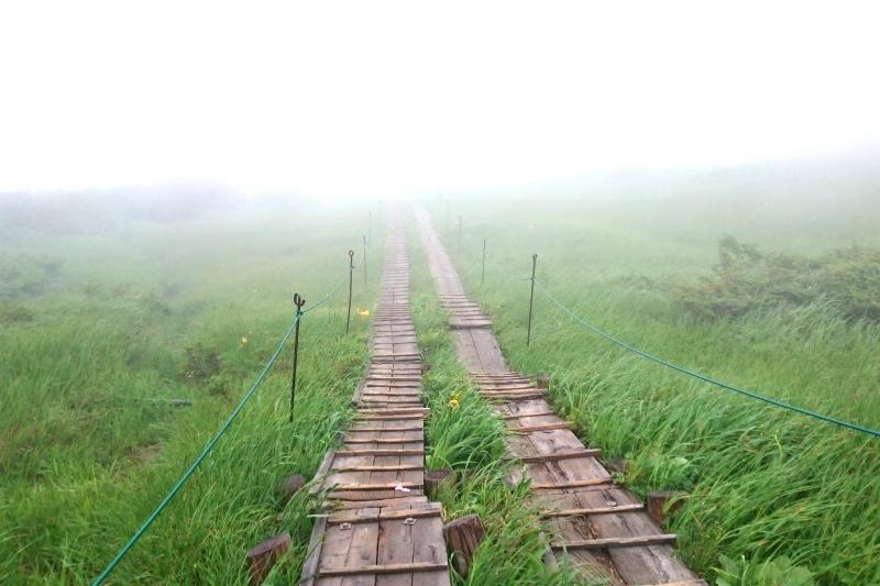 2016.7/6-7/7「月山八合目 花散歩と庄内の食」ツアーレポート